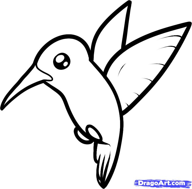 Bee clipart hummingbird.  collection of drawing