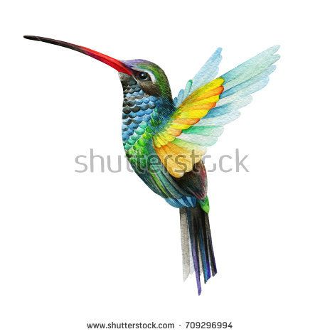 Painted in watercolor technique. Bees clipart hummingbird