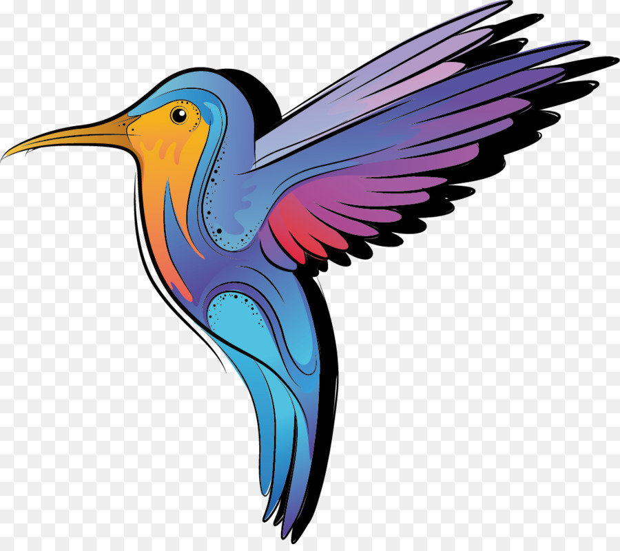 Color cartoon bird png. Bee clipart hummingbird