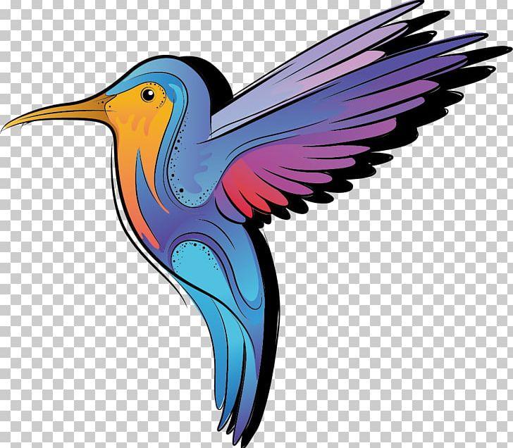 Color cartoon png beak. Hummingbird clipart bee