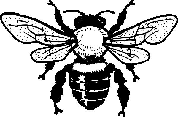 Queen honey clip art. Bee clipart outline
