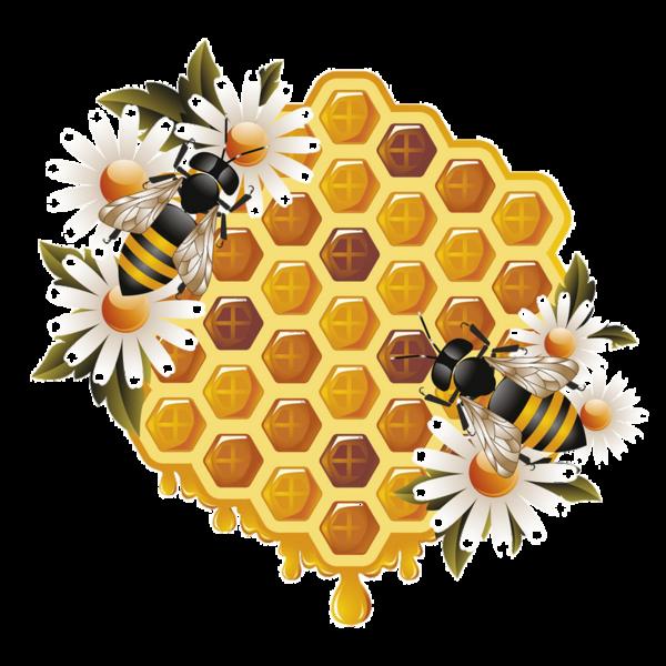 Bees clipart printable. Abeilles abeja abelha png