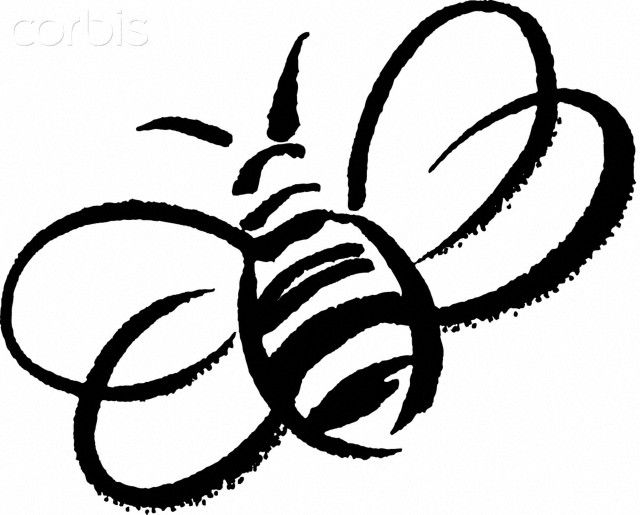 Bumble drawing free download. Bee clipart sketch