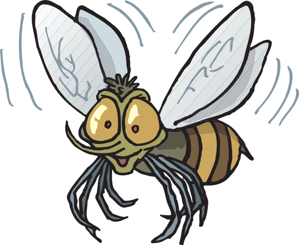 Fly clipart flying fly. Image of bee vector
