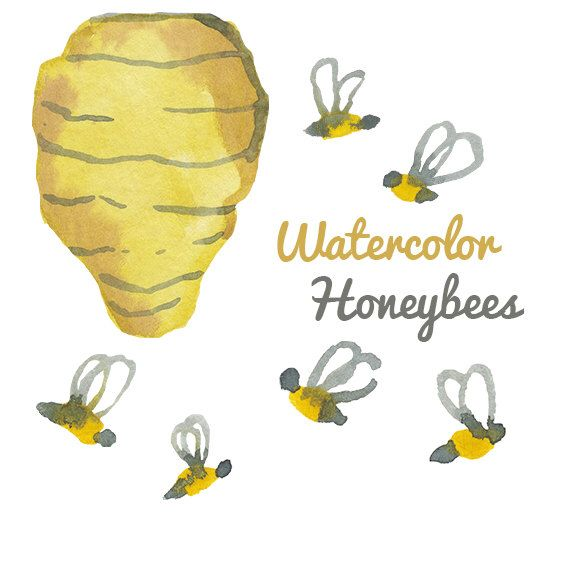 Watercolor Honey Bee Clip Art Image Pack Bees Clipart Digital