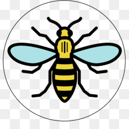 Free download manchester storm. Bee clipart worker bee
