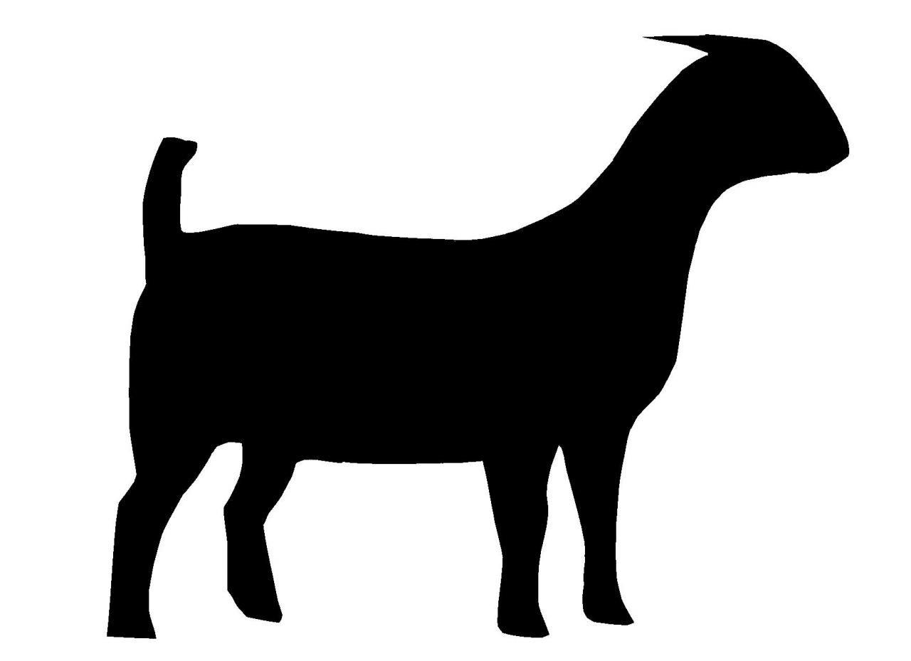 Boer silhouette panda free. 7 clipart goat