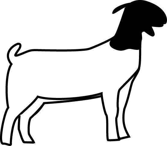 Clipart goat market goat. Club show lambs lamb