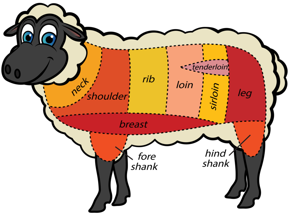 Meat cuts nose to. Ham clipart lamb leg