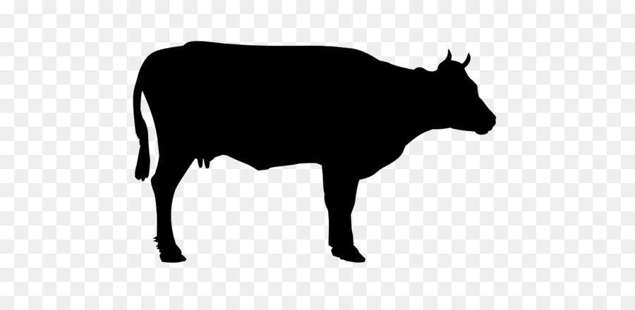 Beef clipart silhouette. Holstein friesian cattle welsh