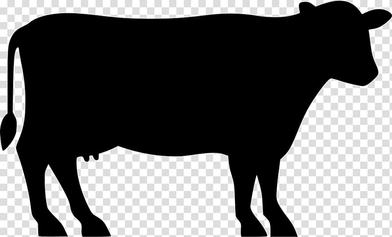 Cow illustration angus cattle. Beef clipart silhouette
