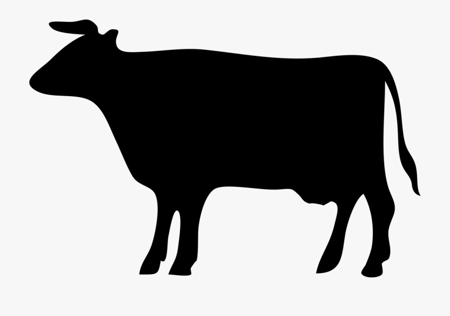 Cattle silhouette free . Longhorn clipart beef cow