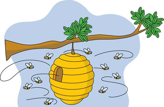 Honeycomb clipart bee home. Free beehive bees carmen