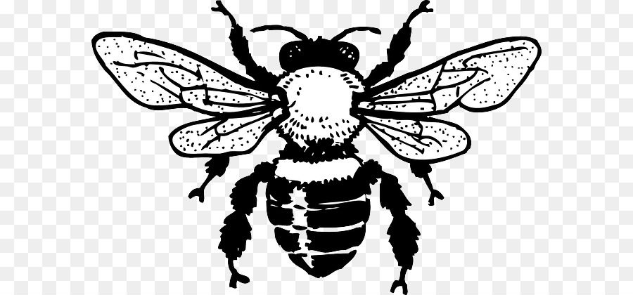 Beehive Clipart Clip Art Beehive Clip Art Transparent Free For