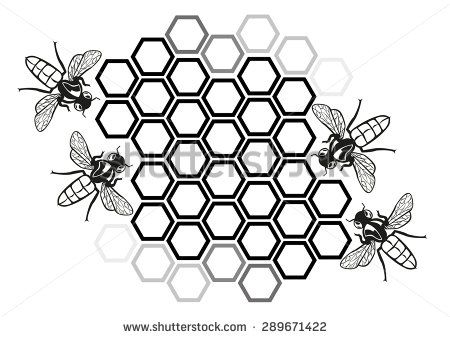 Honey bee drawing cartoon. Beehive clipart drawn