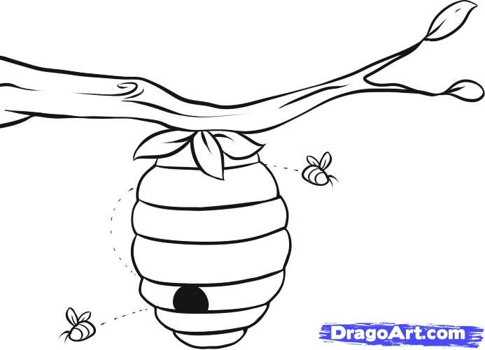 Step school bee drawing. Beehive clipart sketch
