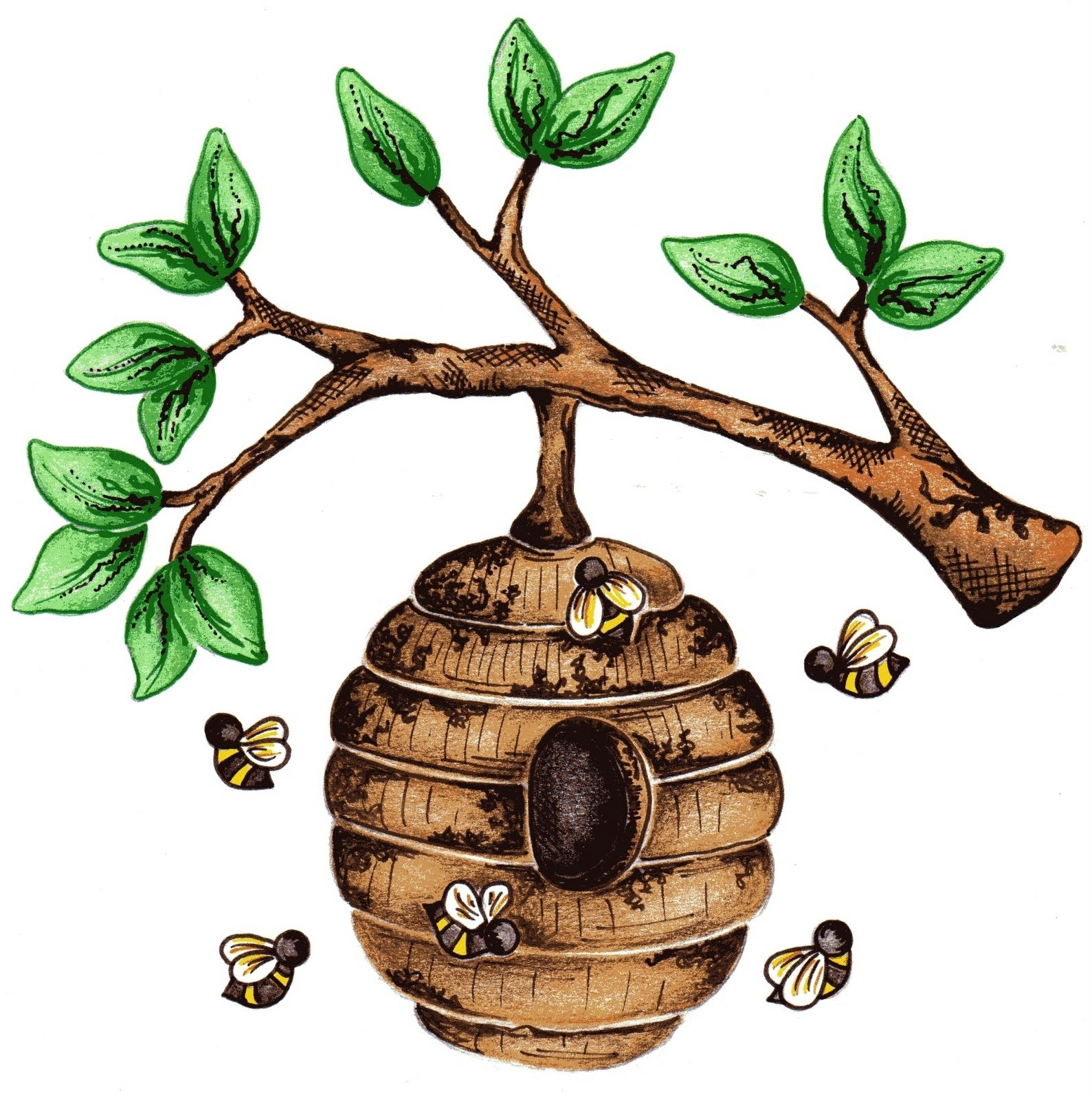 Honeycomb clipart tree drawing. Beehive cilpart sensational ideas
