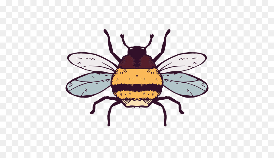 European dark insect honey. Bees clipart carpenter bee