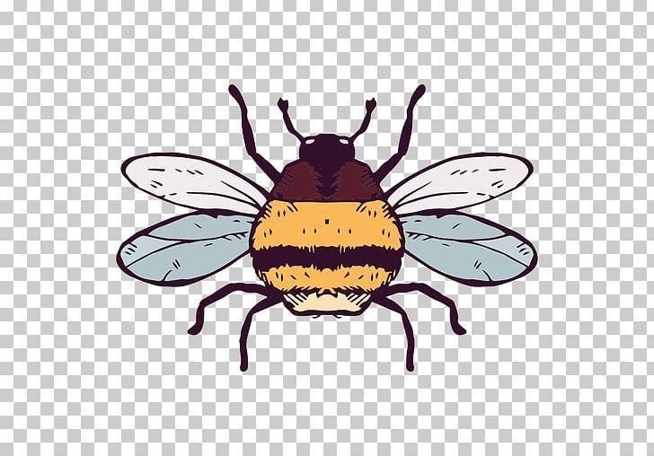 European dark insect honey. Bumblebee clipart carpenter bee