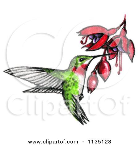 Drawing clip art at. Bees clipart hummingbird