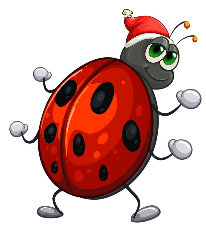Bees clipart ladybug.  best images on
