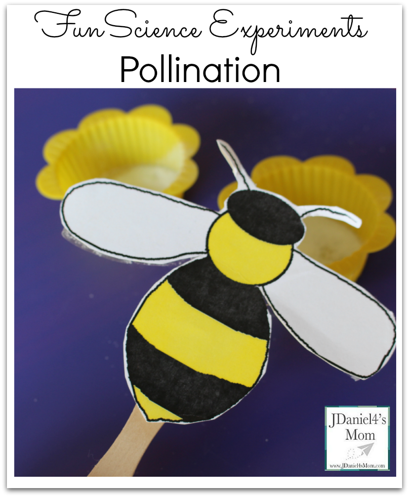 Fun science experiments pollination. Bees clipart pollinator