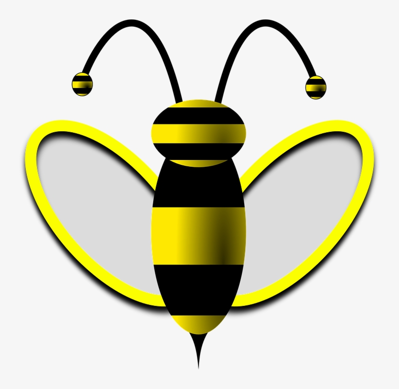Bees clipart summer. Drone bee transparent png