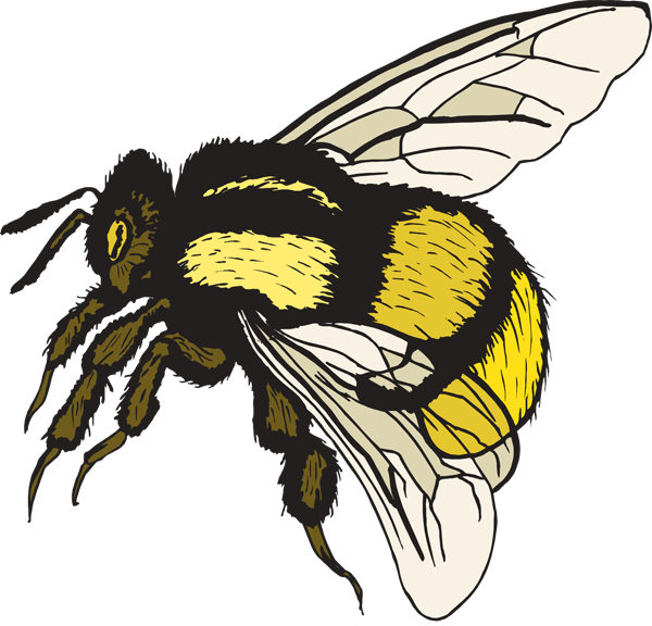 Clipart bee vintage. Bumble vector clip art