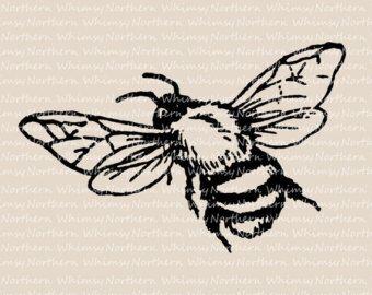 Bee clip art illustration. Bumblebee clipart vintage