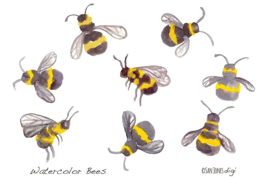 Bees clipart watercolor. Illustrations creative market