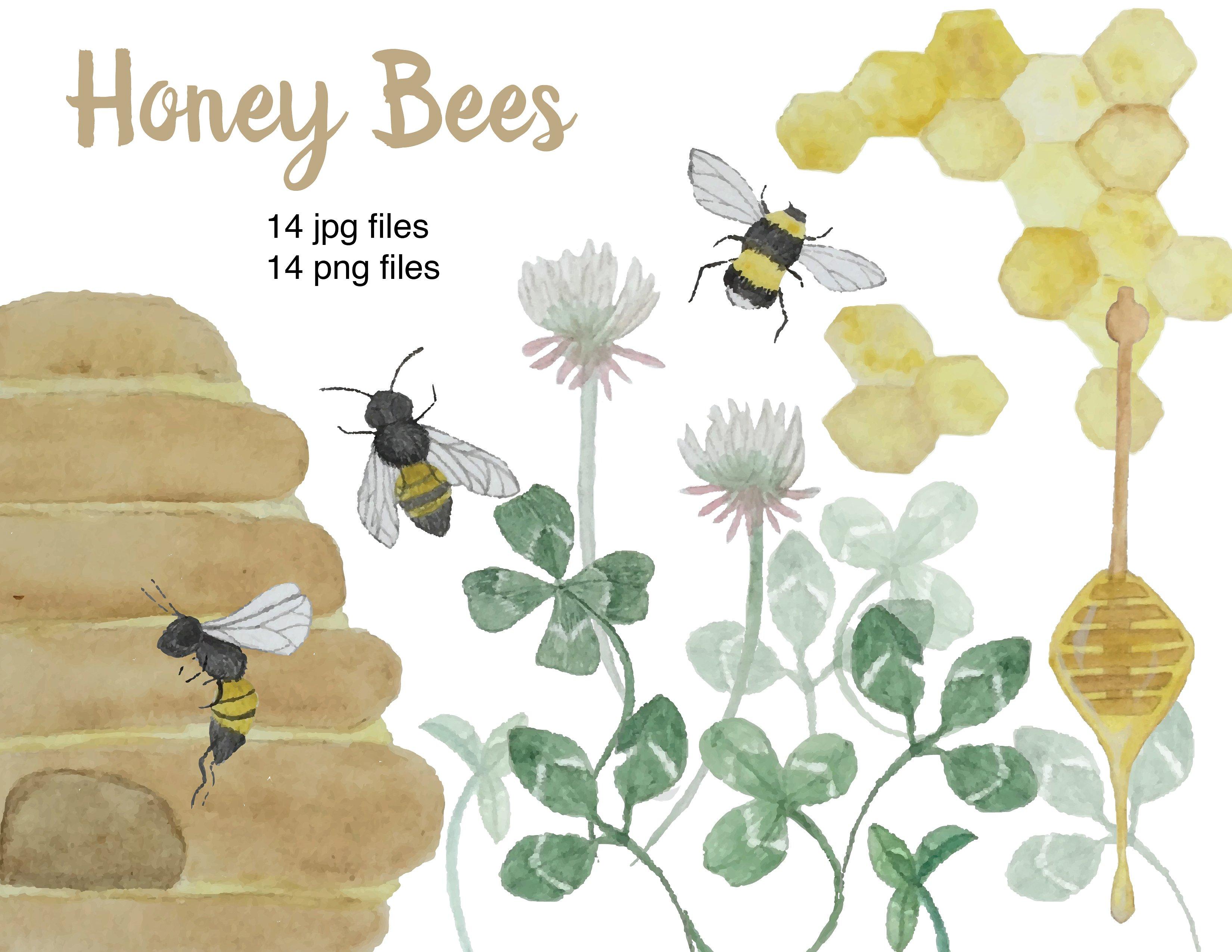 Bees clipart watercolor. Honey illustrations creative market