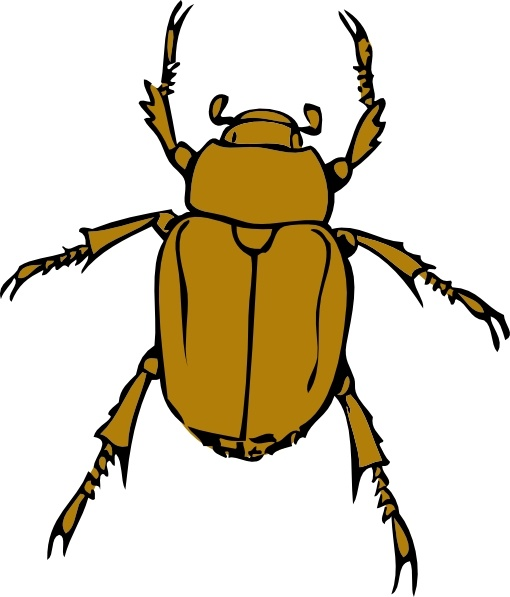 Beetle clipart. Bug clip art free