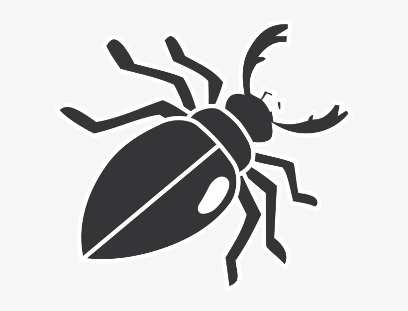 Beetles clip art transparent. Beetle clipart bettle