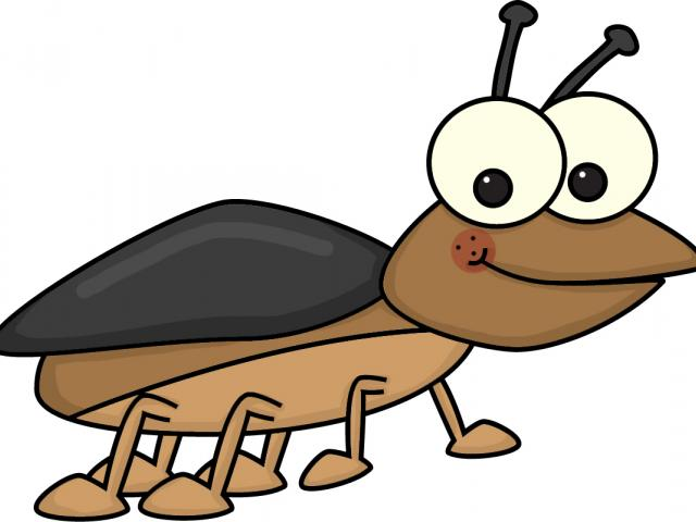 Beetle clipart cartoon. Free download clip art