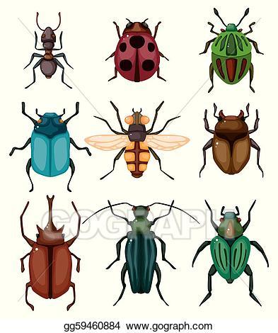 Vector art insect bug. Beetle clipart cartoon