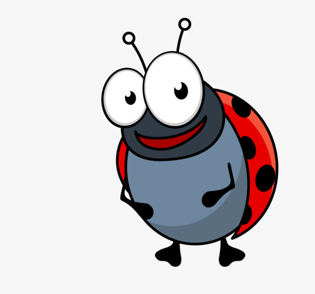 Small animals animal png. Beetle clipart cartoon
