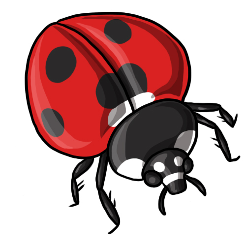 free clip art. Ladybug clipart drawing