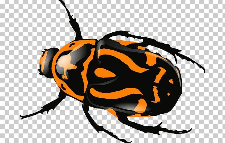 Beetle clipart computer. Icons png arthropod artwork