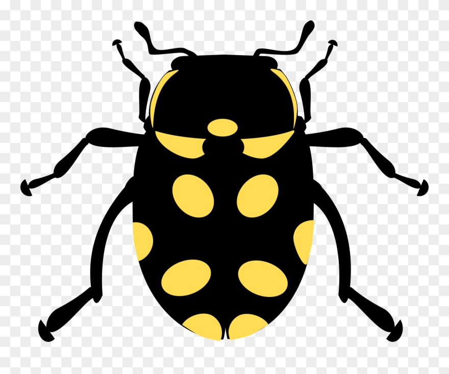 Ladybird icons drawing line. Beetle clipart computer