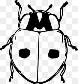 Ladybird clip art png. Beetle clipart computer