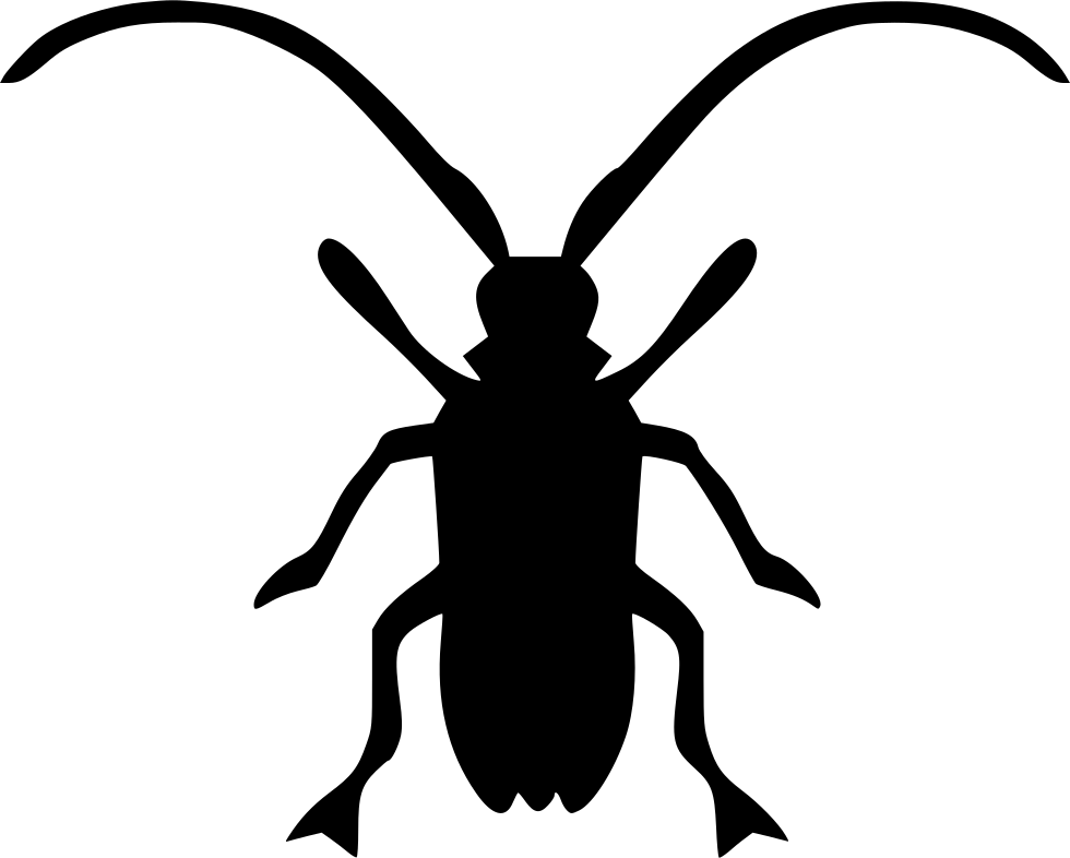 Longhorn clipart svg. Asian longhorned beetle beatle