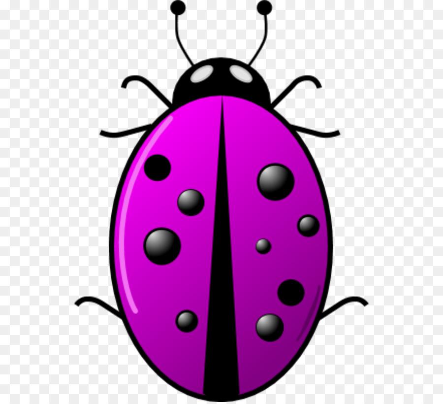 Ladybird clip art surveillance. Beetle clipart computer