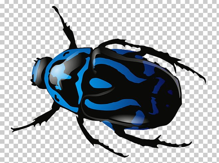 Icons png animals arthropod. Beetle clipart computer