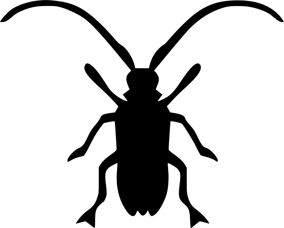 Beetle clipart computer. Asian long horned longhorn