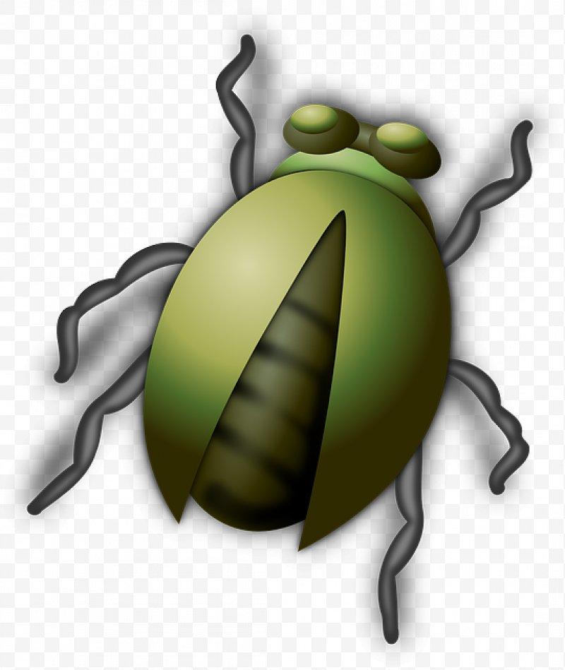 Beetle clipart green beetle. Clip art png x