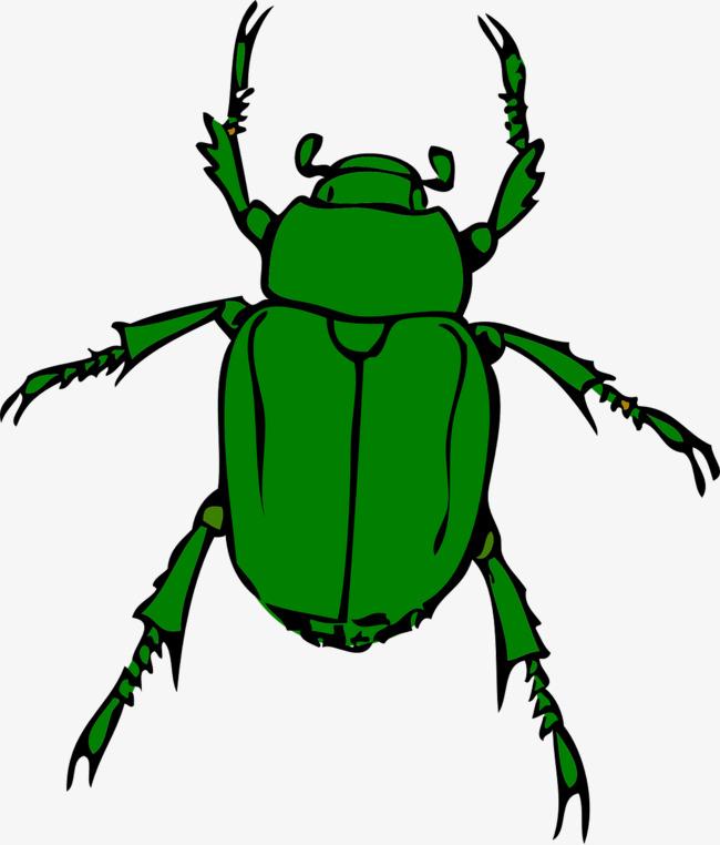 Beatles animal png image. Beetle clipart green beetle