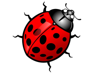Bug clipart clip art. Free cute insect images