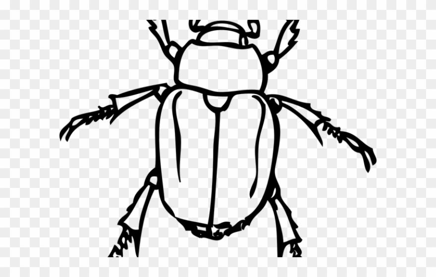 Dung japanese insects black. Bug clipart scarab beetle