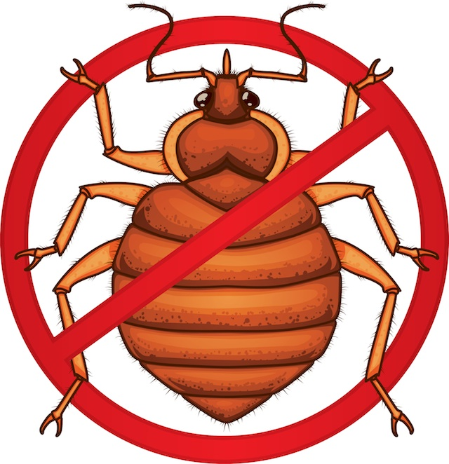 Bug clipart mite. Bed photos images pics