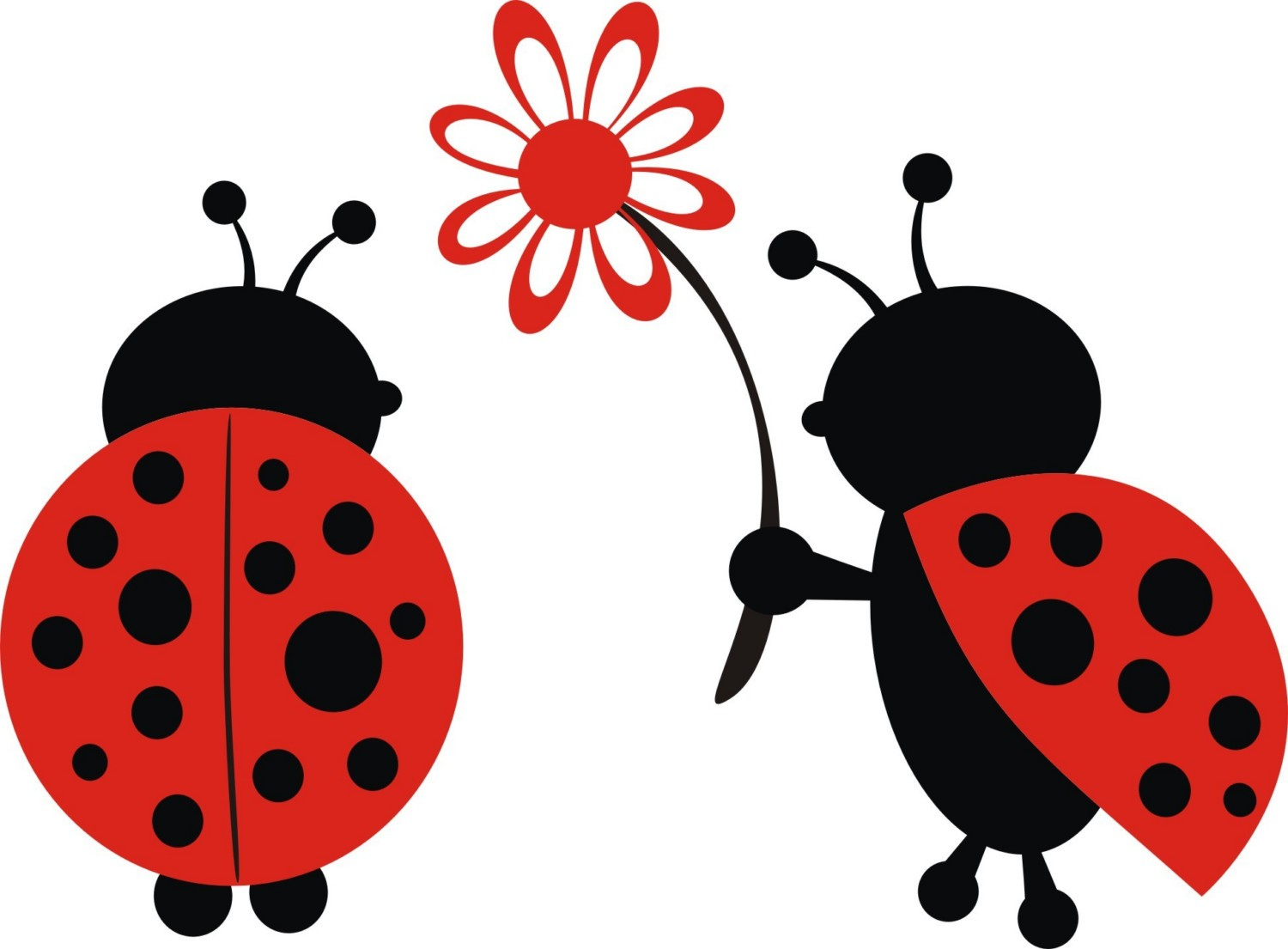 Cute . Ladybugs clipart real